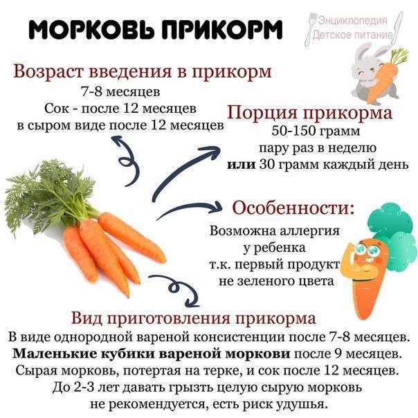 Пюре из моркови для грудничка - всё о грудничках