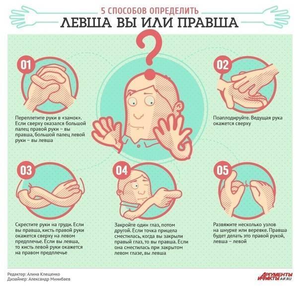 Как определить ваш ребенок правша или левша воспитание малыша на что необходимо обратить внимание советы психологов рекомендации комфорт