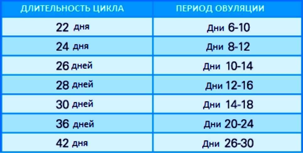 Когда происходит овуляции и сколько она длится / mama66.ru