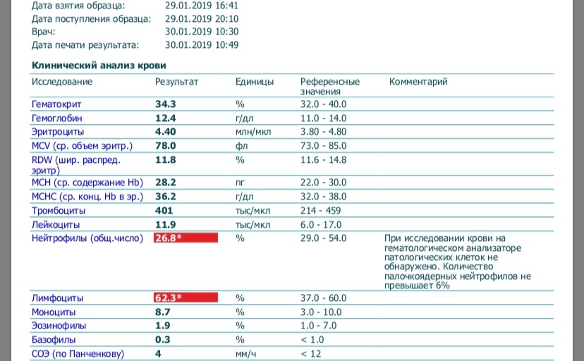 Моноциты повышены у ребенка: что это значит, причины, норма моноцитов