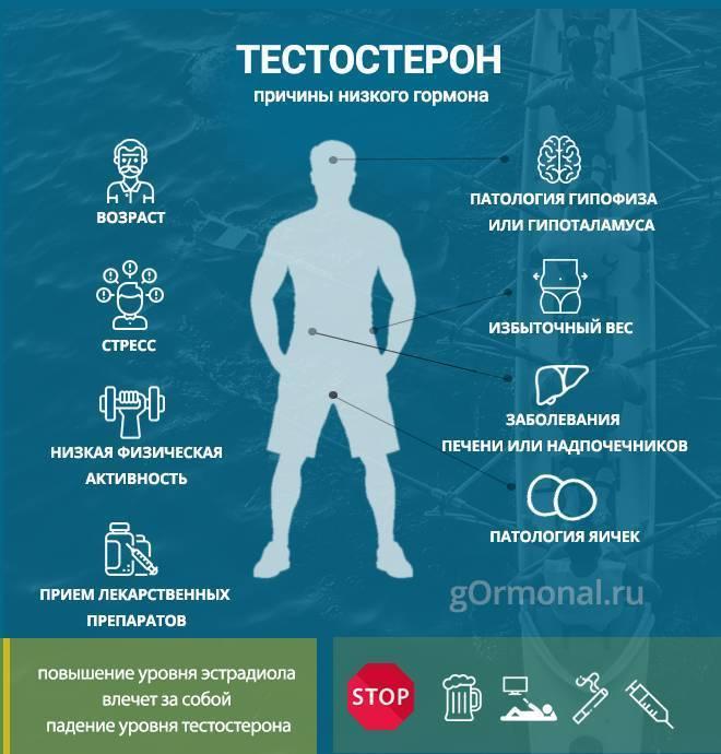 повысить уровень тестостерона простатит