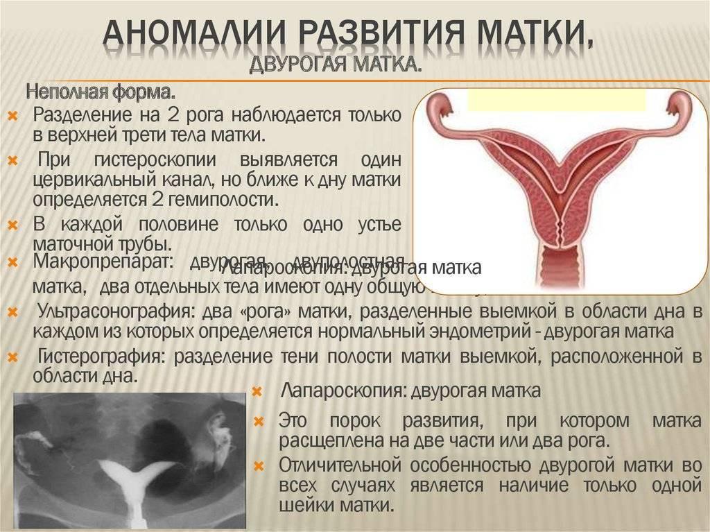 Маленькая матка и беременность