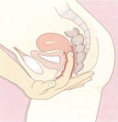 Сухость влагалища при климаксе: как избавиться от дискомфорта. зуд и жжение во влагалище