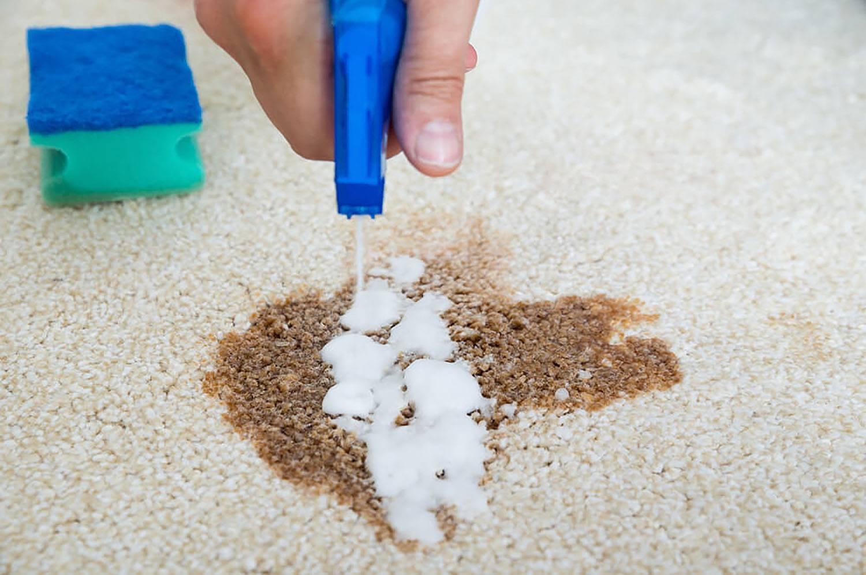 Чистка паласа в домашних условиях: как быстро отстирать или почистить изделие подручными средствами