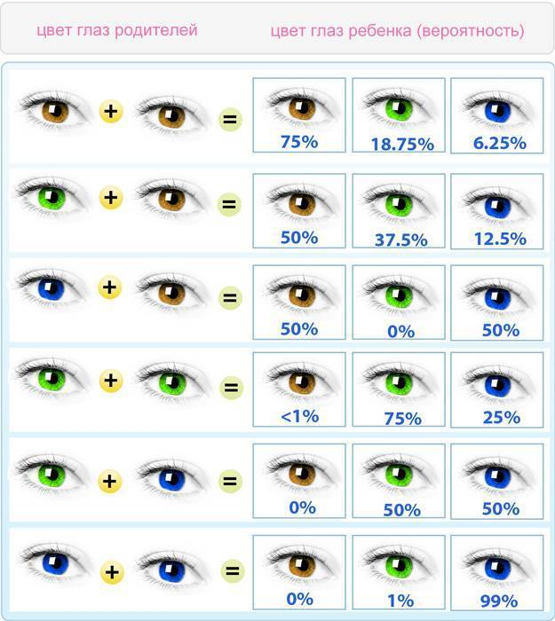 Определение цвета глаз ребенка по глазам родителей - таблица