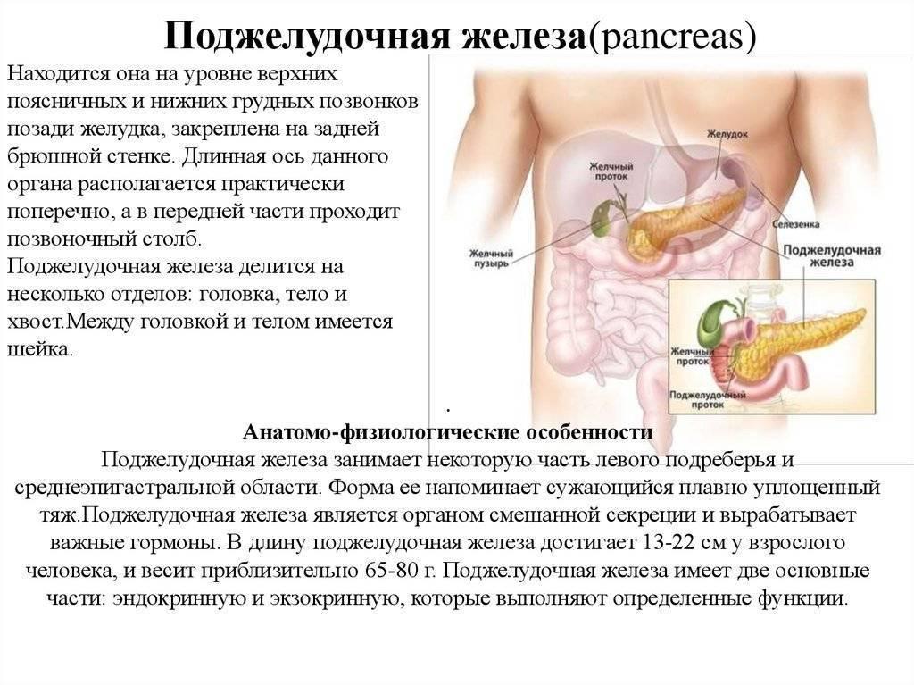 Увеличенная поджелудочная железа причины и лечение диета