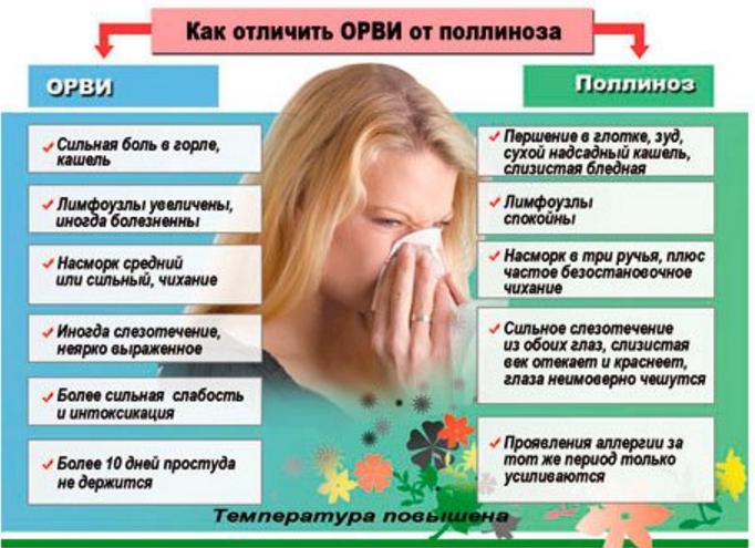 Аллергия на цветение у взрослых: симптомы и лечение, таблетки и методы