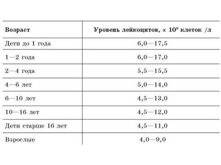 Понижены лейкоциты в крови у ребенка: причины, пониженный показатель, низкий уровень ниже нормы