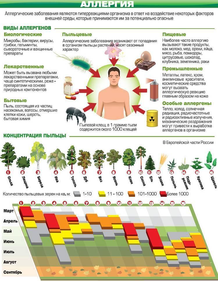 Аллергия на цветение у детей: симптомы и лечение