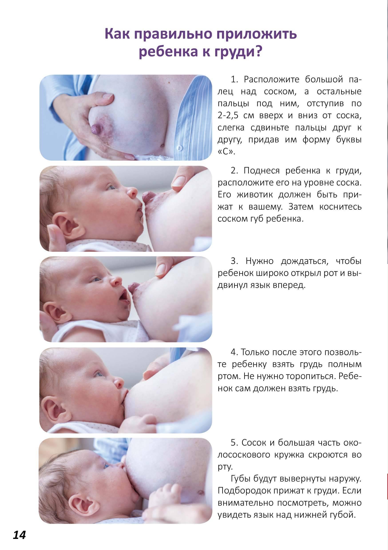 Как правильно прикладывать ребенка к груди, видео советы