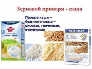 Рейтинг каш для детского прикорма: молочных, безмолочных, готовых, безглютеновых