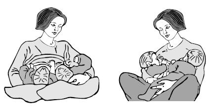 Б — близнецы: как кормить грудью двоих  - азбука грудного вскармливания. как кормить грудью двоих как кормить близнецов