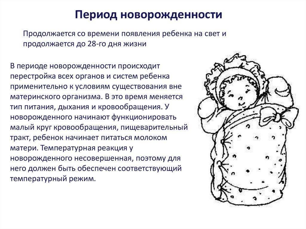 Период младенчества. до какого возраста ребенок считается грудным?