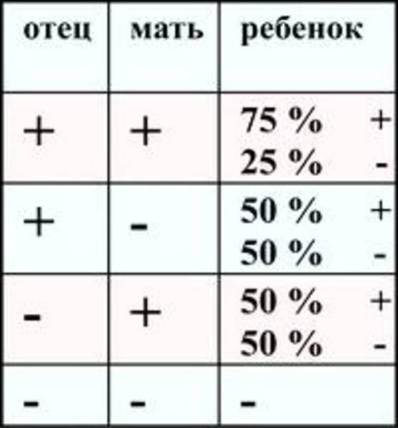 Зачатие (резус-фактор крови)