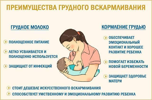 Учим ребенка засыпать без грудного кормления без стрессов и слез