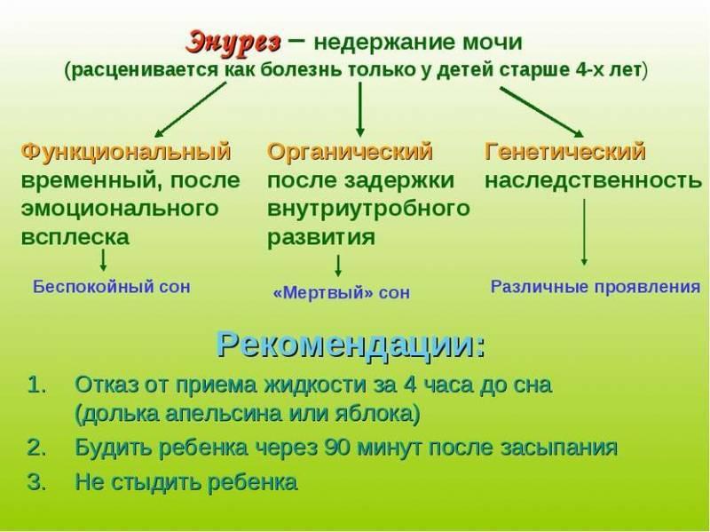 Лечение энуреза в домашних условия – 13 полезных советов - народная медицина | природушка.ру