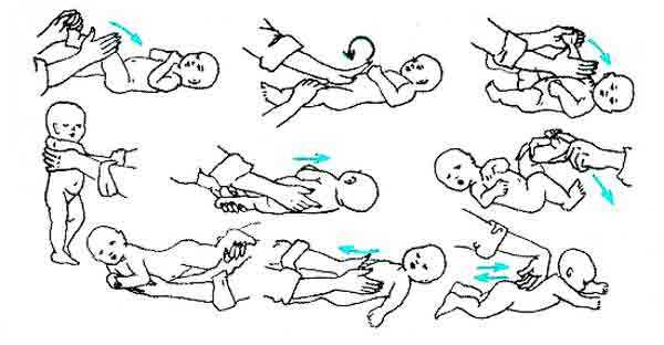 Комплекс упражнений для детей от 2 недель до3месяцев | школа «mamapapa»