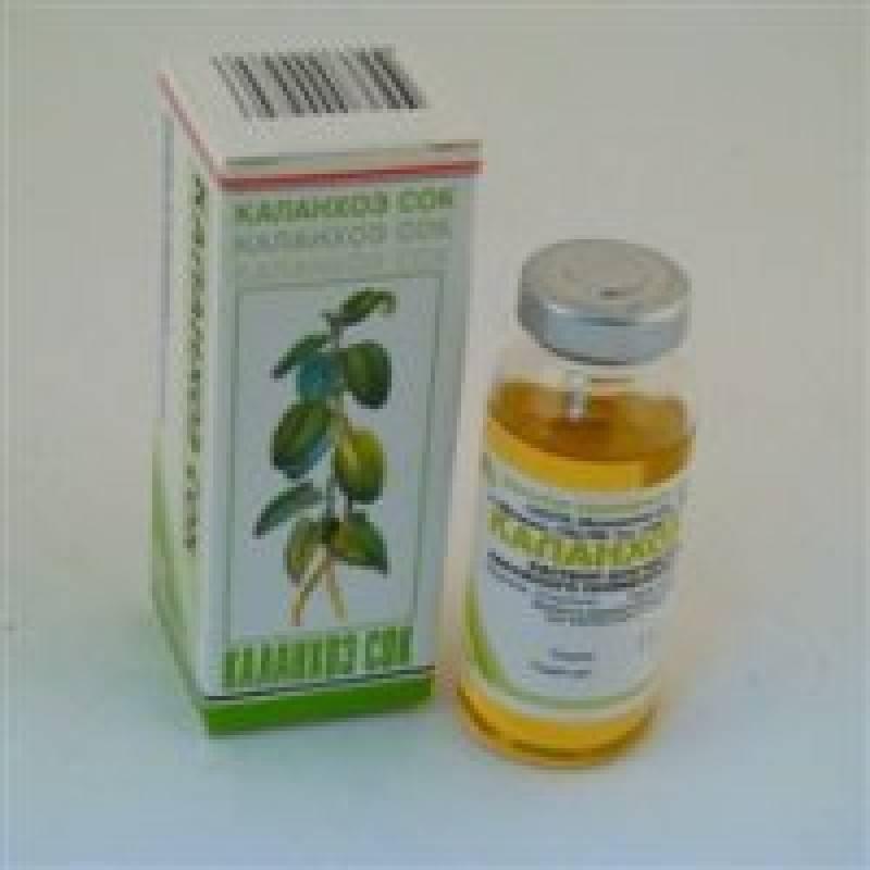 Сок каланхоэ от насморка детям: закапывть в нос или нет, отзывы, спиртовой аптечный сок