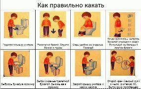 Должен ли воспитатель вытирать попу ребенку