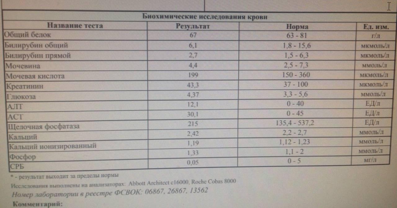 Повышение эритроцитов в анализе мочи - норма, причины повышения