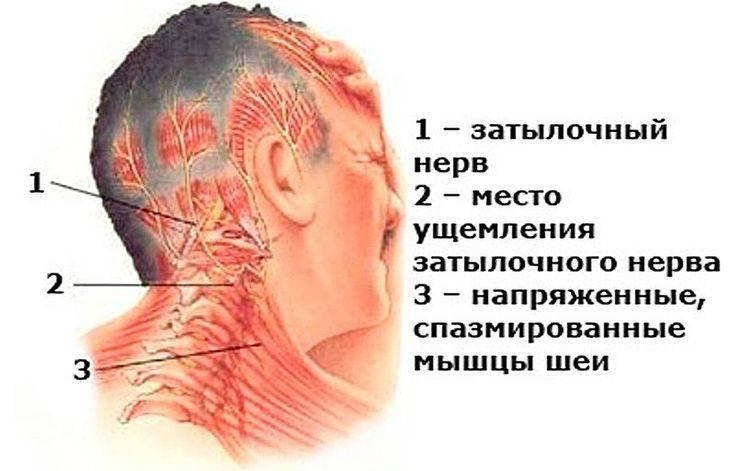 Почему у ребенка шея болит сзади или с одной стороны – с правой или левой, он не может поворачивать голову, что делать?