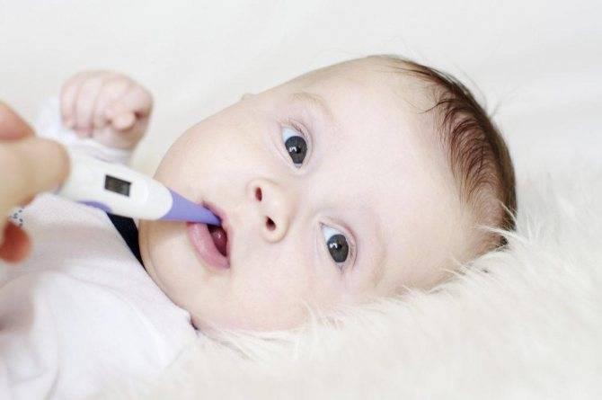 Лихорадка: чем «красная» отличается от «белой»? лихорадка у детей: классификация и особенности лечения синяя лихорадка у ребенка