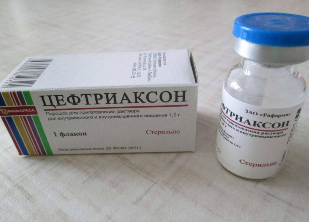 Как разводить цефтриаксон, с чем можно колоть антибиотик?