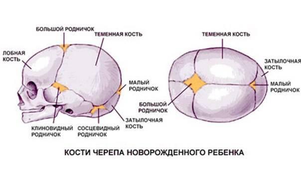 Впалый родничок у грудничка причины - всё о грудничках