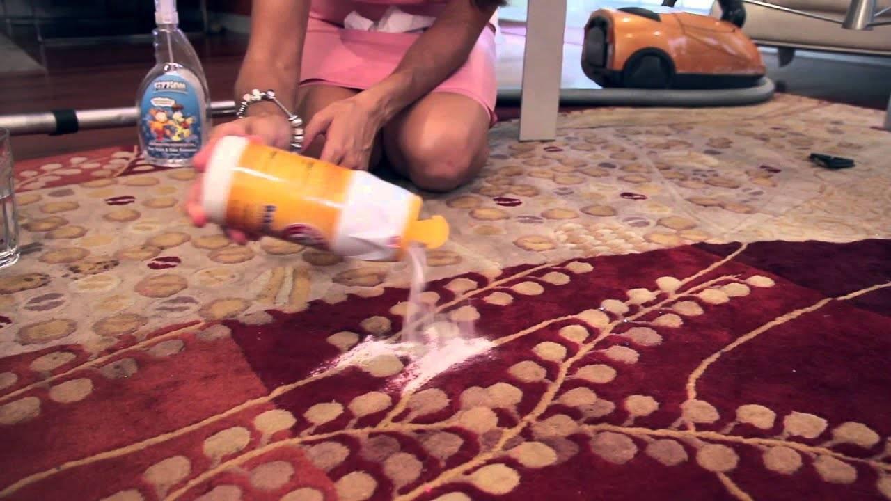 Как убрать запах детской или кошачьей мочи с ковра: домашние и промышленные средства, первопричины проблемы