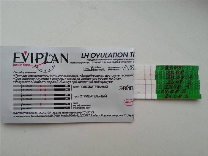 Тест на овуляцию эвиплан (eviplan 5): инструкция по применению, состав комплекта и цена, фото, как выглядит положительный результат?