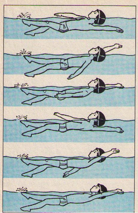 Как научить ребенка плавать: упражнения, рекомендации, видео