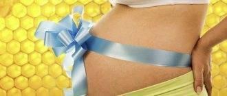 Можно или нельзя есть печень при беременности и почему: показания и противопоказания для будущих мам - врач 24/7