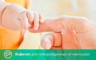 Хофитол состав сиропа. хофитол капли инструкция по применению для детей, как принимать. что лучше