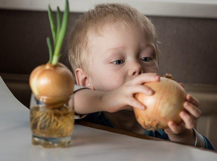 С какого возраста ребенку можно давать чеснок и лук, чтобы не возникло аллергии?
