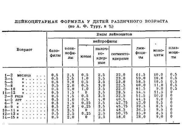 Норма лимфоцитов в крови у женщин по возрасту (таблица) - мир здоровья
