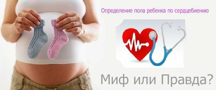 Как определить пол по сердцебиению плода