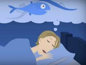 Сны предвещающие беременность