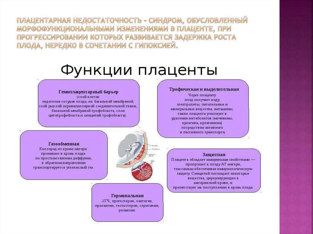 Проблемы со связью. фетоплацентарная недостаточность. фпн при беременности - что это такое?