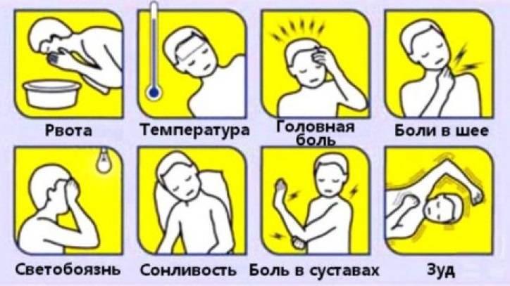 Серозный менингит – симптомы, лечение. симптомы серозного менингита у детей: инкубационный период заболевания, последствия, лечение и профилактика как передается серозный менингит
