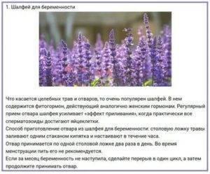 Шалфей при планировании беременности - страница 2 - лекарственные препараты, травы, бады - babyplan
