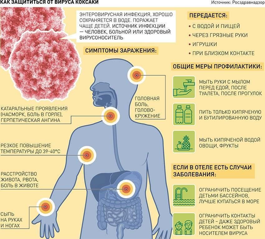 Симптомы, лечение, фото вируса коксаки у детей и взрослых