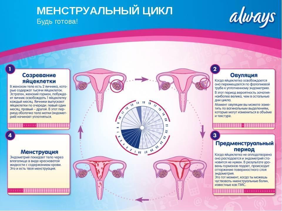 Коричневые и кровянистые выделения при приеме жанина, межменструальные кровотечение