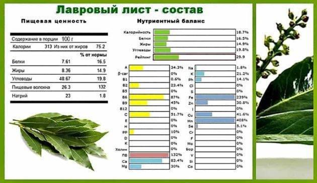 Отвар лаврового листа для выкидыша - healingcraft.ru