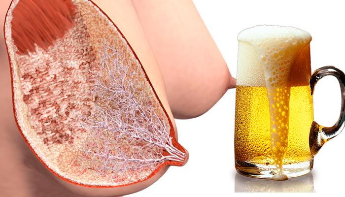 Можно ли пить безалкогольное пиво при грудном вскармливании