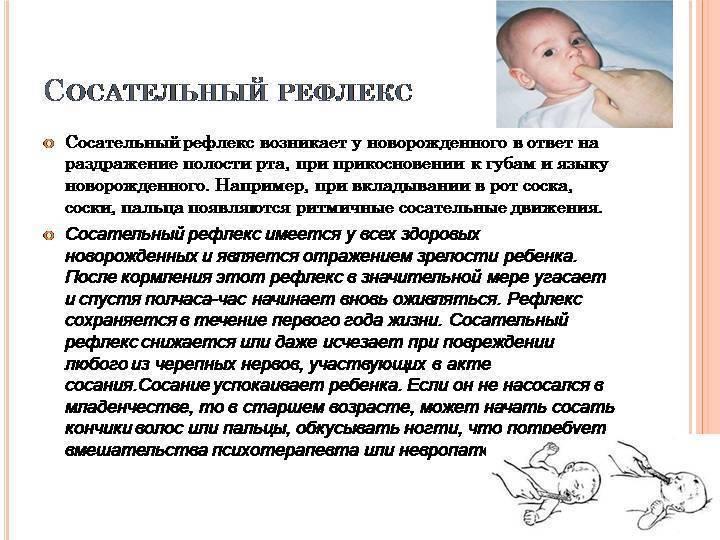 Рефлекс моро у новорожденных: границы нормы и патологии