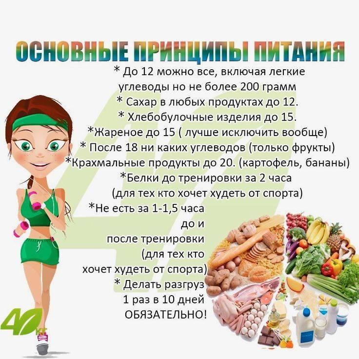 Белковая диета при эко