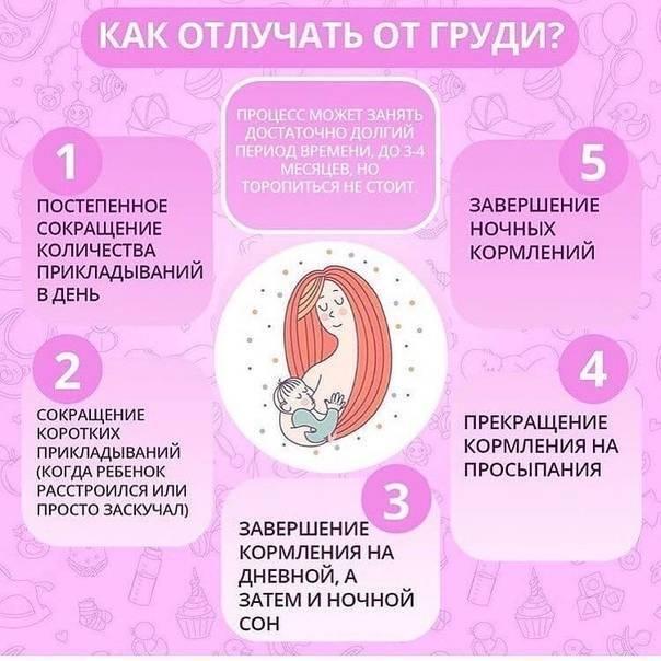 До какого возраста кормить ребёнка грудным молоком ― устанавливаем максимальные рамки при естественном кормлении грудью