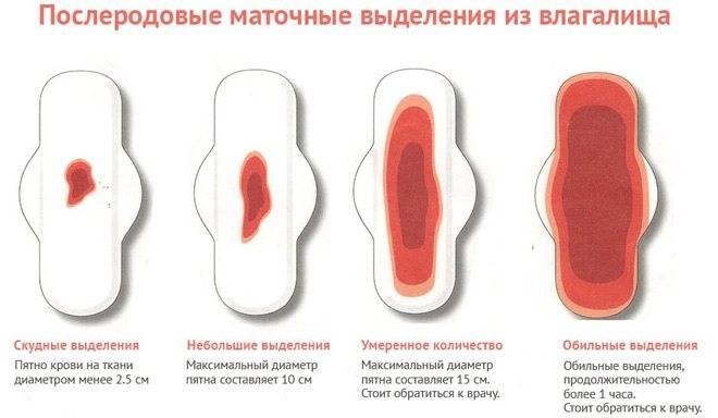Коричневые выделения при беременности на поздних сроках (кровянистые): после осмотра, светло-коричневые