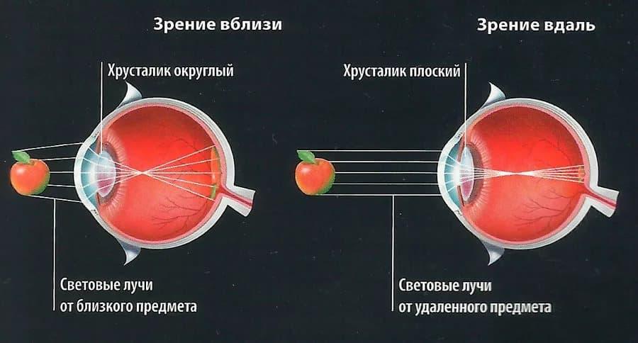 Спазм аккомодации у детей: симптомы и лечение oculistic.ru спазм аккомодации у детей: симптомы и лечение
