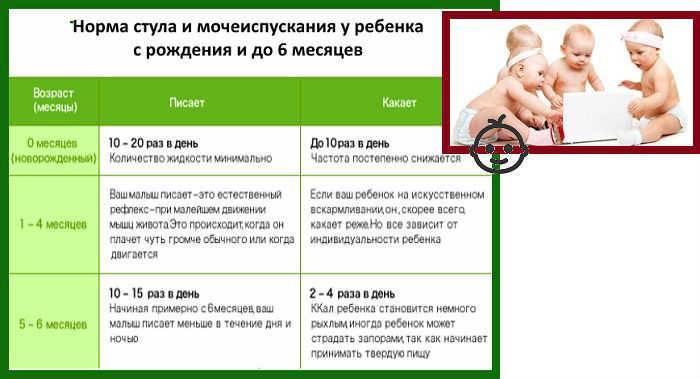 Стул новорожденного: норма, сколько раз в день, цвет
